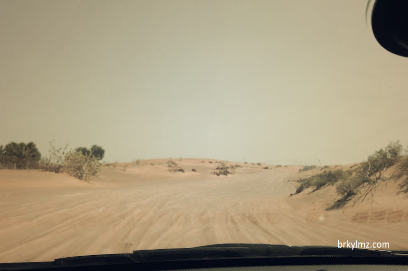 Al Ain (BAE)